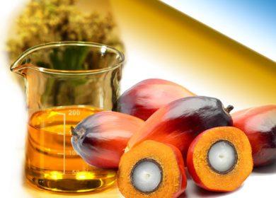 Россия увеличила закупку пальмового масла в 2020 году