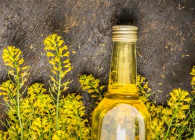 Поставки мелкофасованного рапсового масла планируют наладить в Белоруссии