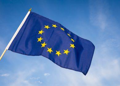Аграрии ЕС увеличат сбор масличных культур в этом сезоне на 5%