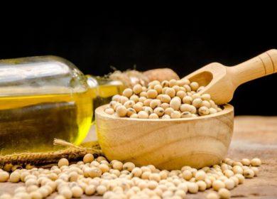 МКБ: Российское соевое масло без ГМО ценится в Европе и Азии