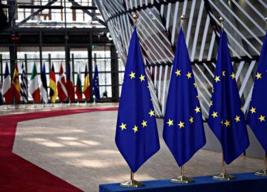 Евросоюз на четверть сократил импорт подсолнечного шрота