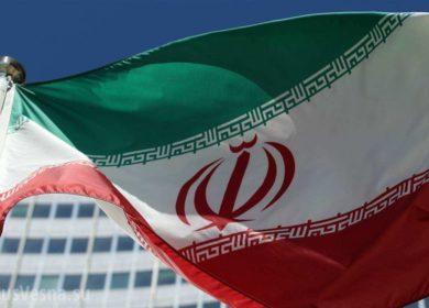 В Иране в 1,5 раза вырос урожай масличных культур