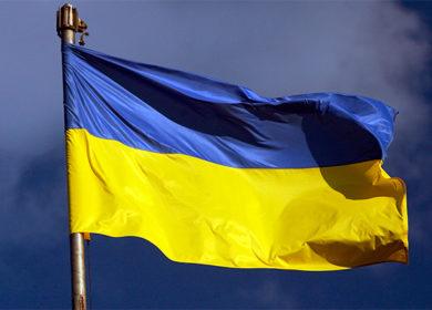 Цены на сою и подсолнечник в Украине растут вслед за мировыми на фоне снижения урожая