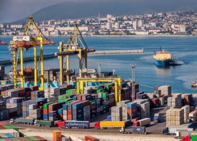 Экспорт масличных и продуктов переработки из российских морских портов сократился на 21% в сентябре