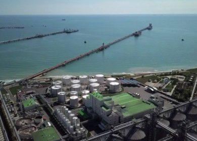 Из морского порта Тамани отправили крупную партию подсолнечного масла в Индию