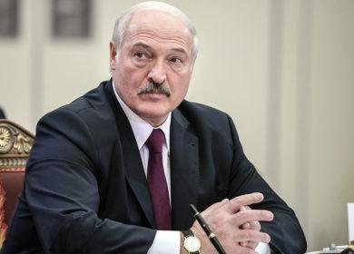 Лукашенко оценил итоги уборочной кампании рапса