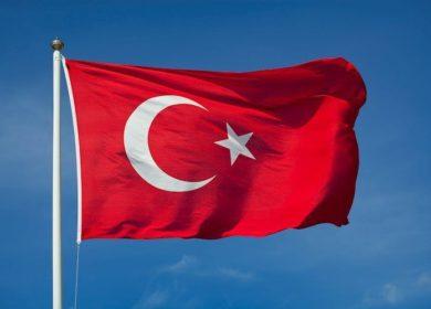 Турецкие аграрии потеряли 15% урожая подсолнечника