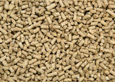 В Белгородской области выявили комбикорм с высоким содержанием ГМО-сои