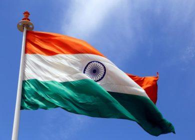 Индия уменьшила закупку соевого шрота в этом году более чем в 2 раза