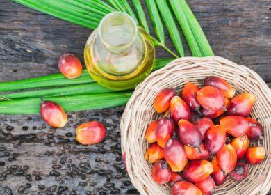 Самое востребованное пищевое масло в Индии – пальмовое