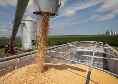 Мировой экспорт сои сократился в сентябре