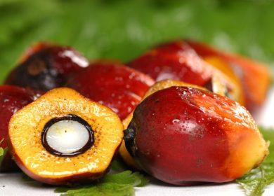 Россия потратила более $496 млн на импорт пальмового масла с января по август т.г.