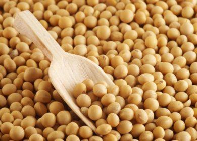 В сентябре в Аргентине аграрии уменьшили переработку соевых бобов