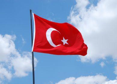 Турция в августе почти в 4 раза сократила импорт подсолнечника