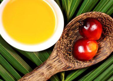 Россия закупила 953 тыс. тонны пальмового масла за 11 месяцев 2020 года