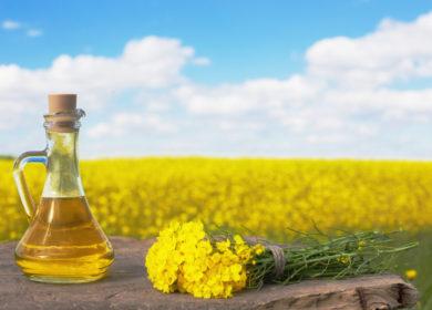 В октябре показатели производства рапсового масла в Казахстане достигли трехлетнего минимума
