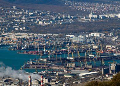 Отгрузки подсолнечного масла в российских морских портах выросли за неделю более чем в 2 раза