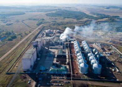 В Липецкой области построят завод по производству масла за 7,5 млрд рублей