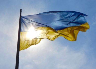В «Укролияпром» снизили оценку урожая масличных к концу 2020/21 маркетингового года
