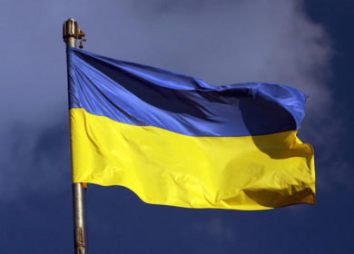 Цены на масличные культуры на Украине растут