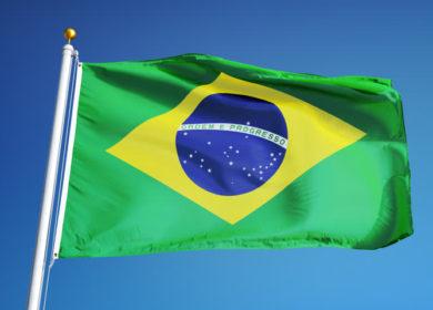 В ANEC пересмотрели прогноз экспорта соевого шрота и соевых бобов из Бразилии в ноябре