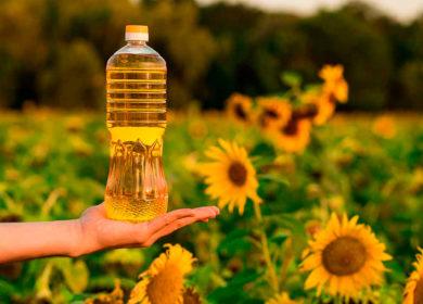 В России на 10% выросло производство подсолнечного масла