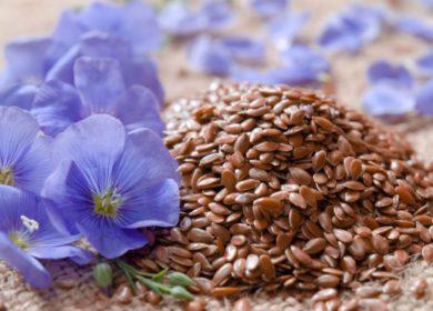 За 10 месяцев т.г. из Башкортостана экспортировали более 22 тыс. тонн семян масличного льна