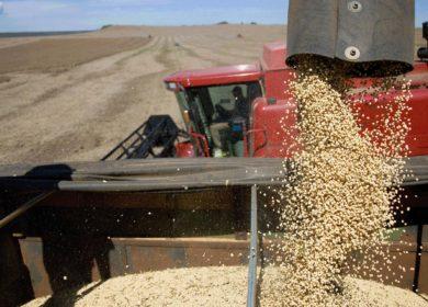 Американские фермеры практически завершили уборку сои в стране