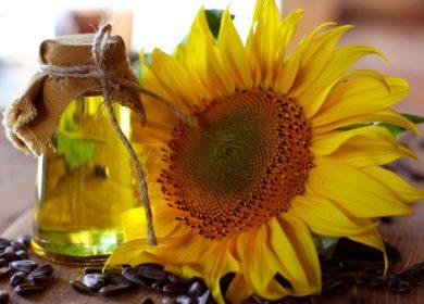 Рынок семян подсолнечника, подсолнечного масла и шрота — тенденции и прогнозы