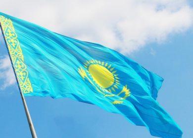 Запасы масличных культур в Казахстане превысили отметку в 1,1 млн тонн