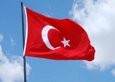 Турция изменила размер пошлины на импорт подсолнечного масла