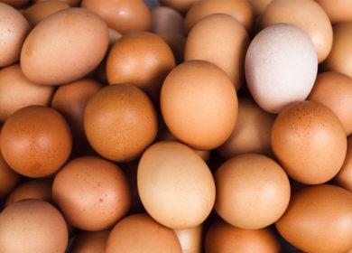 Куриные яйца могут уступить прилавки растительным заменителям уже через 10 лет
