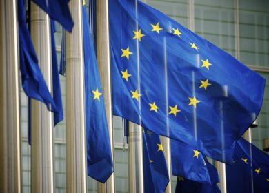 Страны Евросоюза наращивают закупки растительных масел