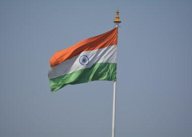 Индия увеличила закупки украинского подсолнечного масла в октябре