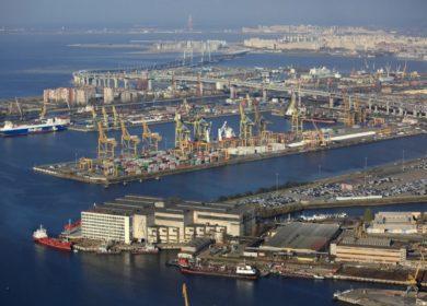 Отгрузки отечественных масличных и продуктов переработки из портов в октябре выросли практически вдвое