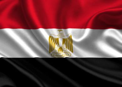 Египет объявил тендер на закупку 40 тыс. тонн растительного масла