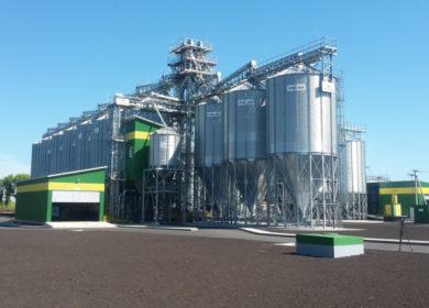 В Воронежской области заработал завод по производству элитных семян