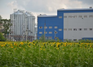 Более 1 тыс. тонн подсолнечного масла ежедневно будут производить на новом МЭЗе в ВКО