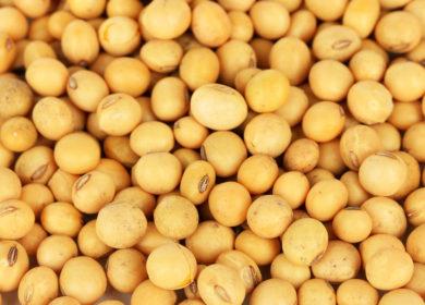 Аргентина импортировала практически 1 млн тонн сои в I квартале т.г.