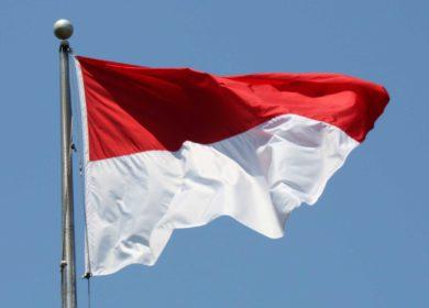В октябре т.г. Индонезия увеличила экспорт пальмового масла