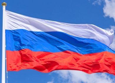 «Штрубе Рус»: льгота на отчисления за семена может улучшить селекционную работу в России