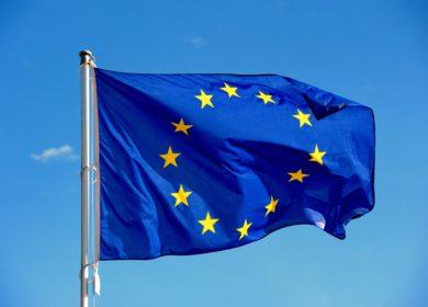 Еврокомиссия обновила оценку импорта рапса и сои в ЕС