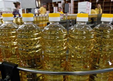 Мировое производство подсолнечного масла может уменьшиться в 2020/21 МГ на 9%
