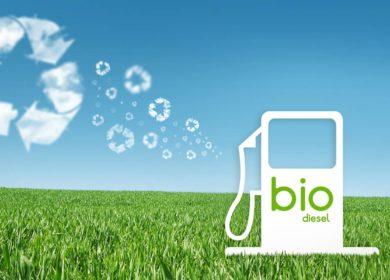 Производство американского биодизеля может вырасти по итогам 2020 года