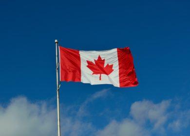В канадском Минсельхозе прогнозируют сокращение производства соевых бобов и канолы в 2021/22 МГ