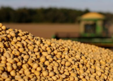 Бразилия в марте экспортировала рекордное количество сои