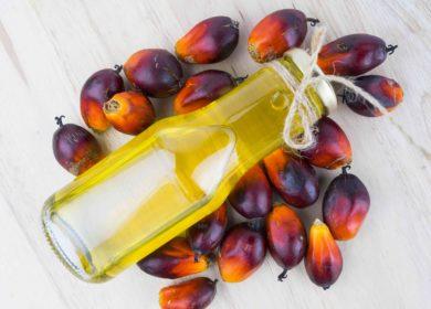 Производство пальмового масла в Индонезии может превысить 45 млн тонн в следующем сезоне