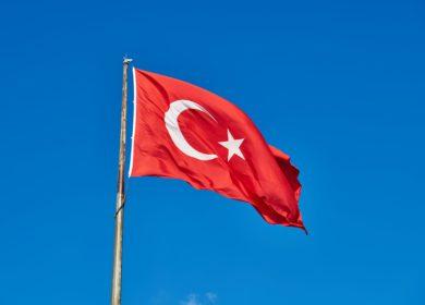 В Турции урожай масличных культур в этом году снизился на 2%
