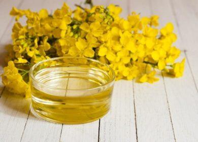 Украина сокращает экспорт рапсового масла в этом сезоне