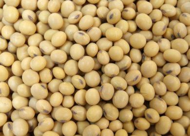 Эксперты Зерновой биржи Буэнос-Айреса снизили оценку урожая сои в Аргентине